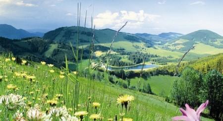 Landhotel Spreitzhofer,Wanderurlaub,Wandern Steiermark,Wandern Österreich (2)